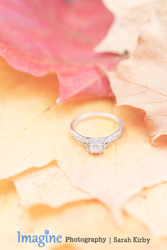 2019_10_20_Engagement_Alicia&Justin_Blog-39